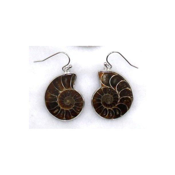 ammonit sterlingsølv ørering